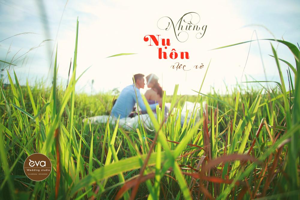 album-anh-cuoi-tron-goi11-10