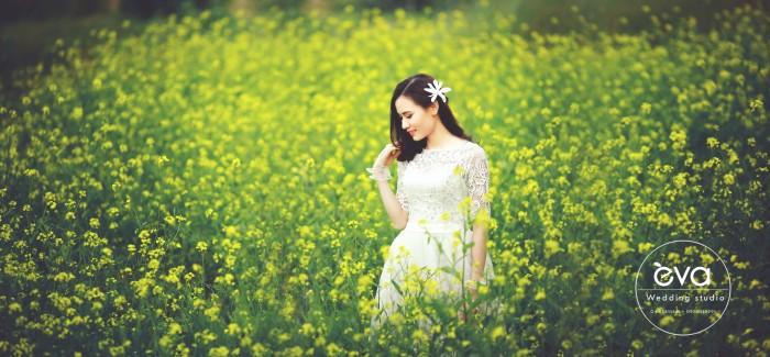 album-anh-cuoi-tron-goi7-6